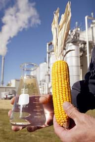 Photo shows an ear of dried yellow corn on the cob and a beaker of clear liquid with a backdrop of an industrial plant with smokestacks.
