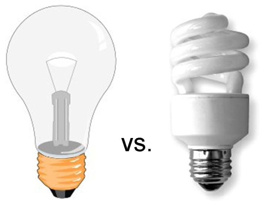 Light Vs Heat Bulbs Activity