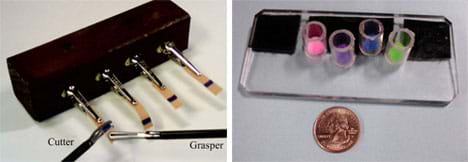 "Two photos: (left) A block of wood with four alligator clips sticking out of it. Each clip is clamped to a rubber band piece  with a black line on it. Two tools, identified as ""cutter"" and grasper,"" are working together to hold and cut one rubber band. (right) A 4 x 5-in piece of clear, rigid acrylic on a counter, with four clear plastic cylinders made from 3/4-in sections of PVC tubing, standing upright on it. Each cylinder contains a mini puffball of a different color (pink, purple, blue, green)."