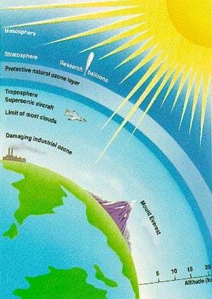 ozone hole essays · custom essays on ozone depletion for a long studies show that the amount of ultraviolet light at the surface can double during the annual ozone hole in.