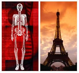 (left) Image of a standing human skeleton. (right) Photo of a side view of a tall metal structure that is wider at its base than its top.