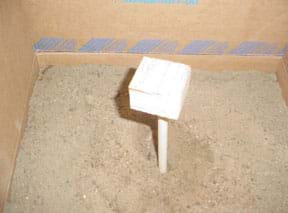 Photo shows a wooden dowel submerged into soil layers at the bottom of a cardboard box.