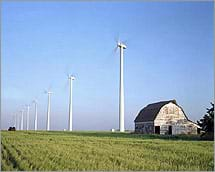 Photo shows many tall wind turbines near a barn and fields of crops.