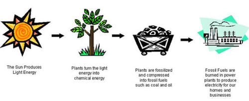 A graphic illustrates how plants turn the sun's light energy into chemical energy. When the plants die they are compressed into fossil fuels such as coal and oil, which are burned in power plants to create electricity.