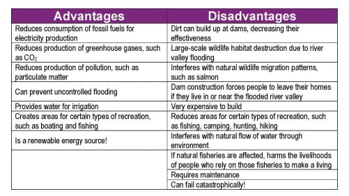 Human impacts on the environment essay