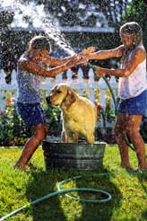 A photograph shows a girl holding her thumb over a running hose end to make it spray at another girl and dog.