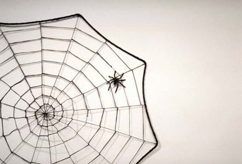 A black/white image of a spider web with the spider in it.