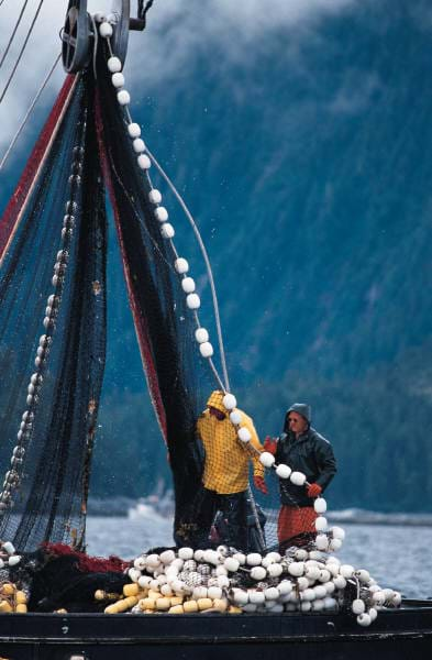 A photograph of fishermen on a boat using a pulley to pull in their net.