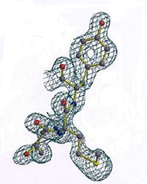 A color drawing looks like a tinker-toy structure of 25 linked nodes surrounded by a mesh netting.