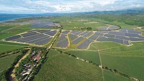 An aerial photograph shows a solar panel farm that looks like bluish-black regions surrounded by green acreage.