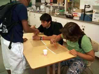 Photo shows two students sitting at a classroom table carefully dropping a pink liquid onto clear transparency sheets with grids printed on them.