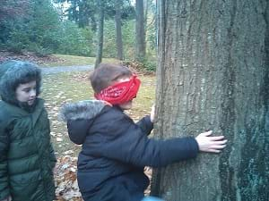 A young boy touching a tree while blindfolded.